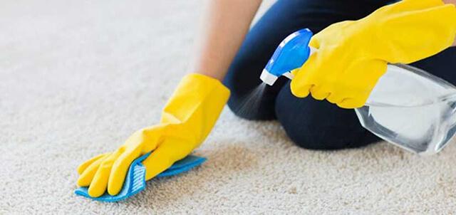 نظافت موکت | زت کارپت