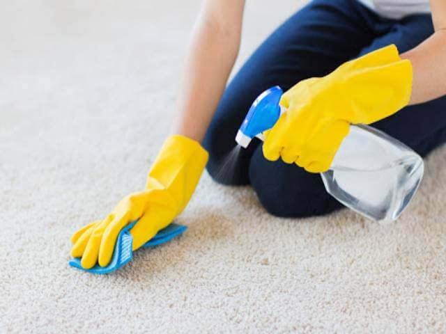 چطور لکه های مختلف را از روی فرش و موکت پاک کنیم؟ | شرکت زت کارپت